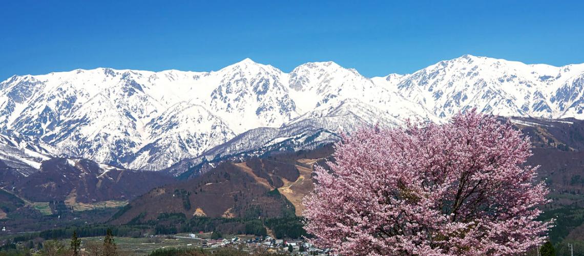 Why You Should Book a Spring Ski Trip to Hakuba
