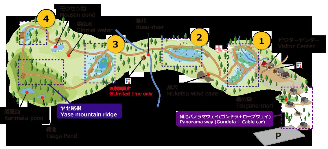 Tsugaike Kogen Summer - Floating Walkway