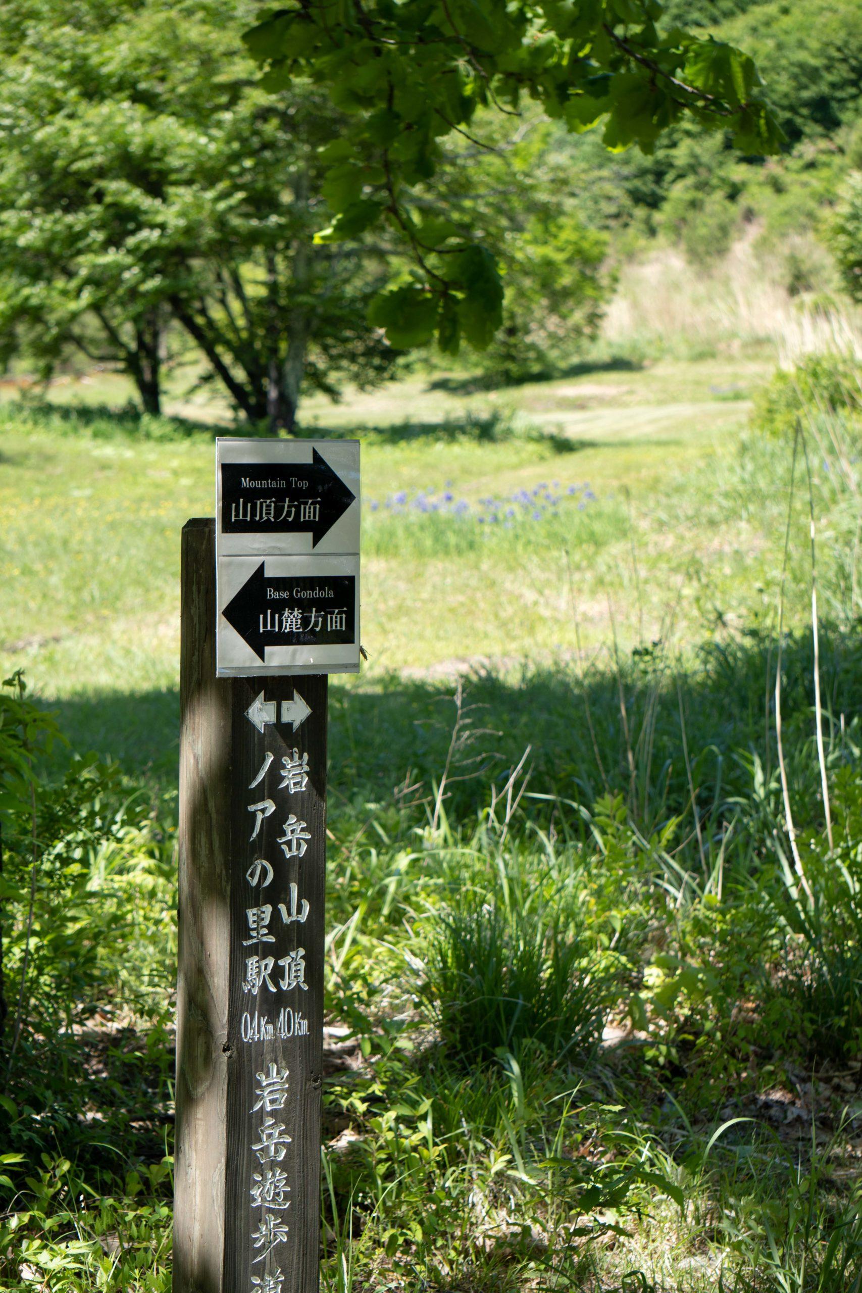 Hiking Iwatake (1 of 11)