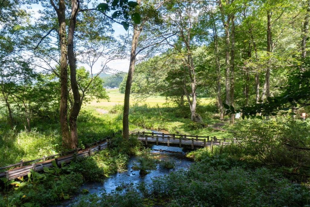 Himekawa Headwaters Nature Park - 姫川源流 (12 of 16)