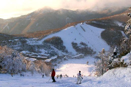 Top 10 Places to Ski in Japan - Shiga Kogen