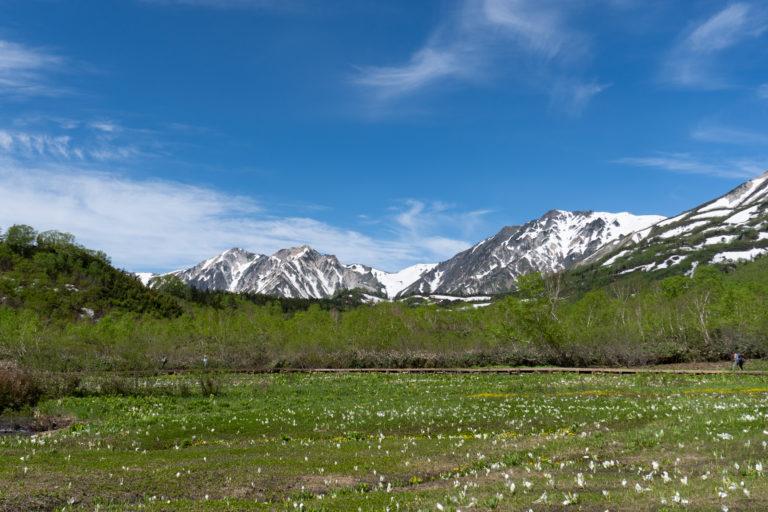 Tsugaike Hiking June 17th (16 of 40)