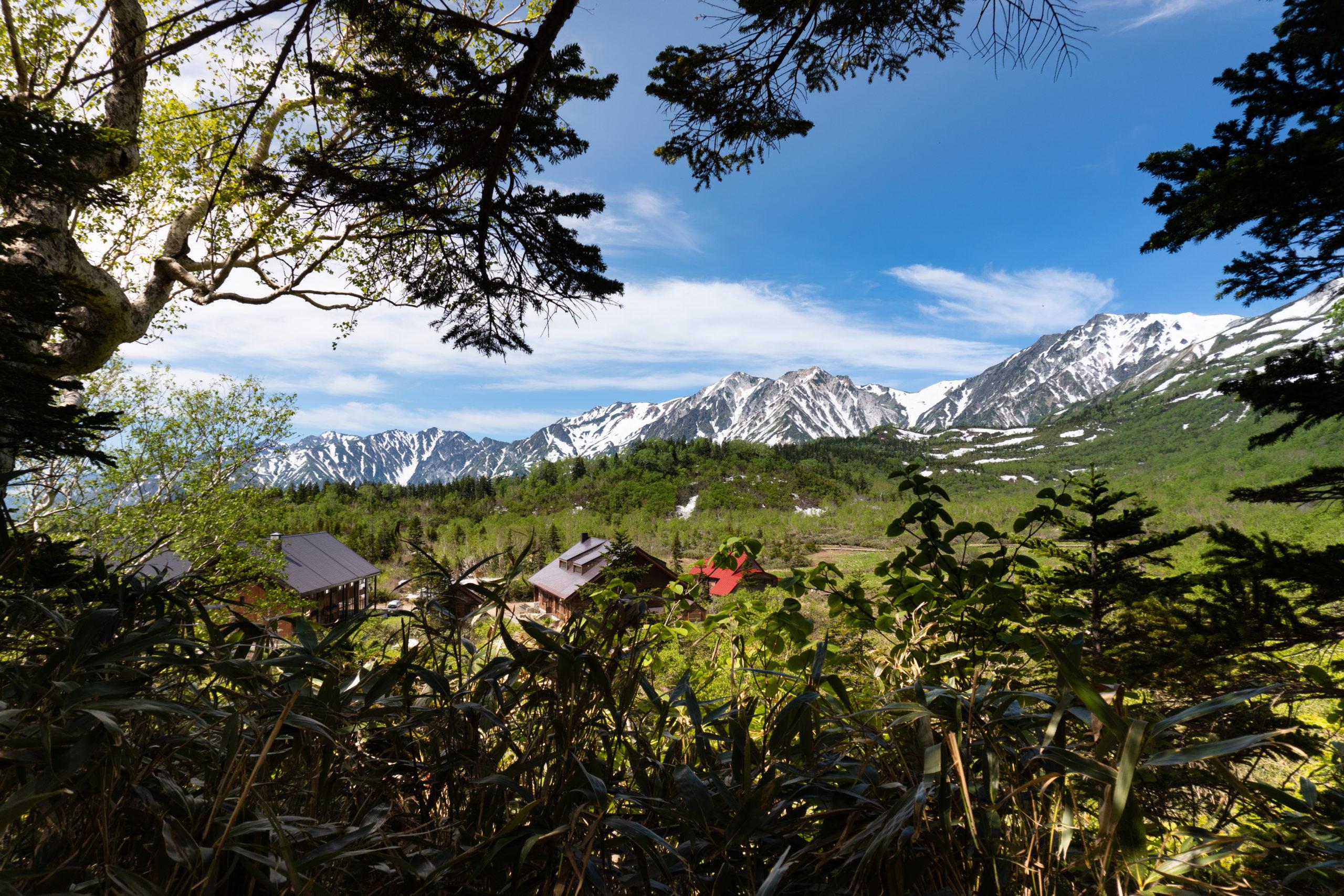 Tendu no Hara Hike - Tsugaike Hiking June 17th (23 of 40)